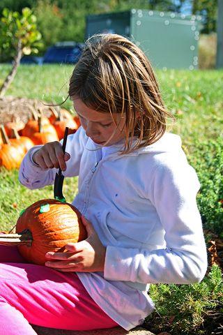 Ashland fest maya pumpkin