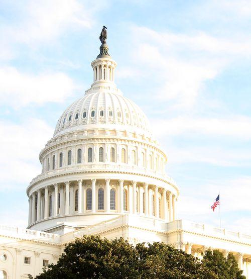 Capitol sunlight