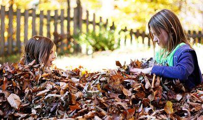 Girls leaves